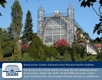Botanischer Garten Garten Und Museum Sightseeing Event Nightlife